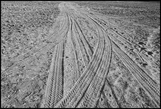 "photo ""Road"" tags: black&white, landscape,"