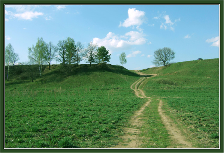 "фото ""Лето вперед!"" метки: пейзаж, лес, лето"