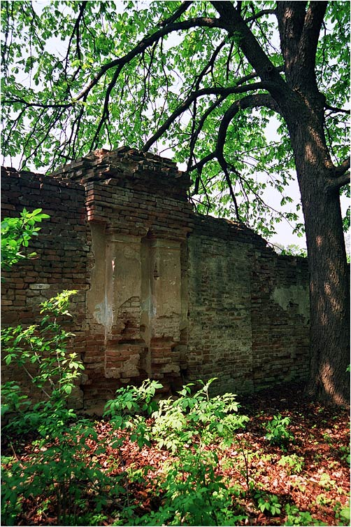 "photo ""The wall(ancient garden)"" tags: landscape, architecture, forest"