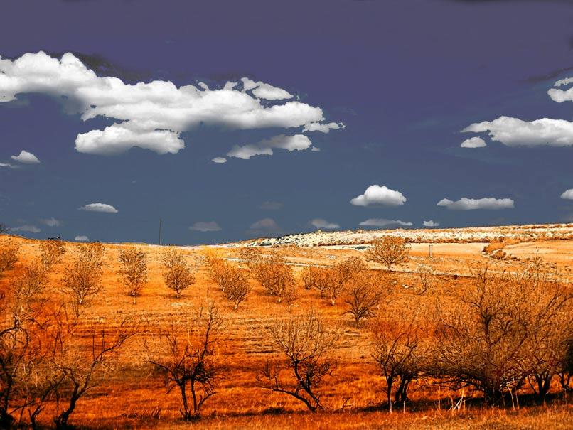 "photo ""Яргора"" tags: landscape,"