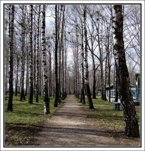 """photo """"Park a Village"""" tags: landscape, forest"""