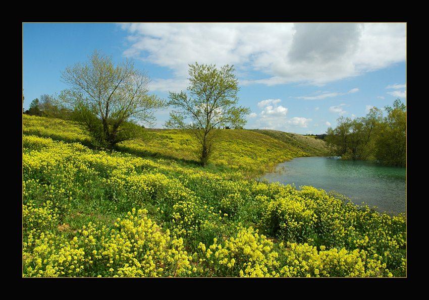"""photo """"Printemps"""" tags: landscape, spring"""