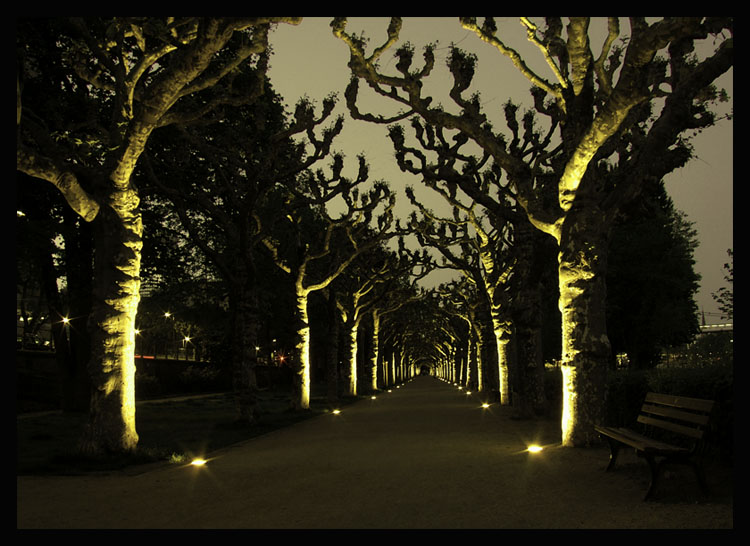 """photo """"Night Watch"""" tags: landscape, night"""