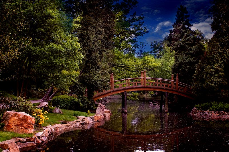 "photo ""Japanese Garden"" tags: landscape, forest, spring"