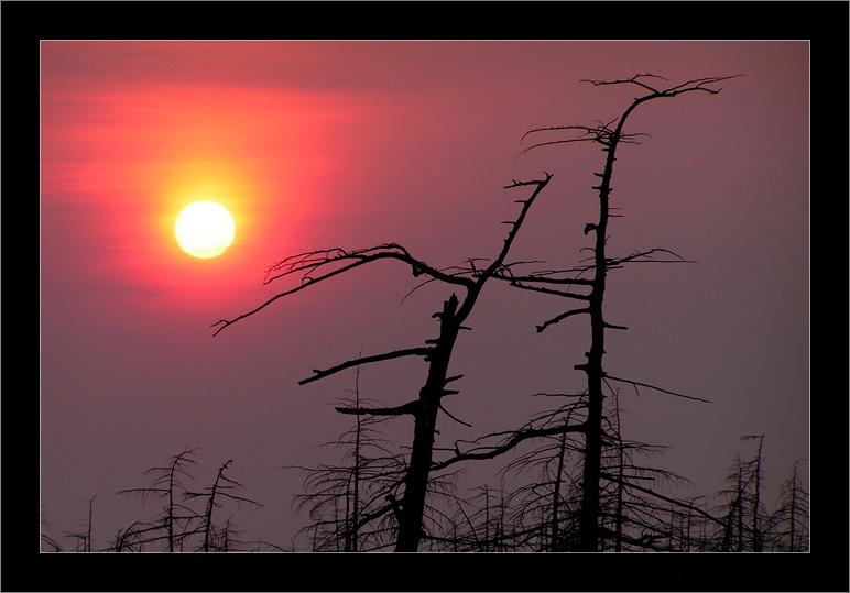 "photo ""Вечер, Чайво 13 мая 2006 г."" tags: landscape, autumn, sunset"