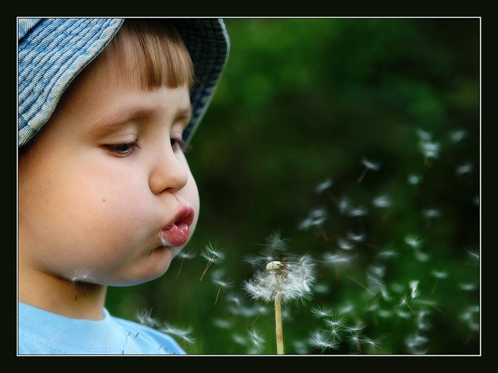 """фото """"Одуванчик"""" метки: портрет, жанр, дети"""