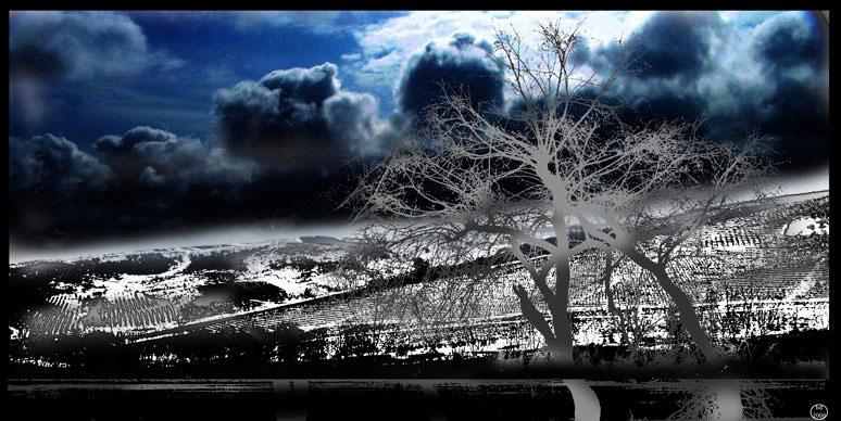 """photo """"После дождя"""" tags: landscape, clouds"""
