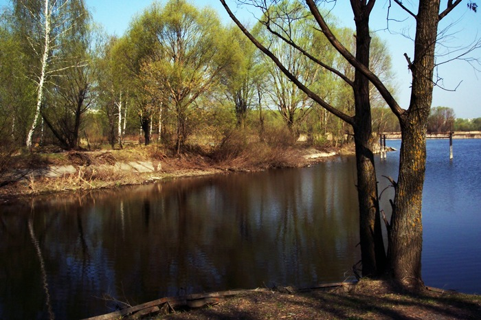 "photo ""On coast of very silent river (2)"" tags: landscape, spring, water"