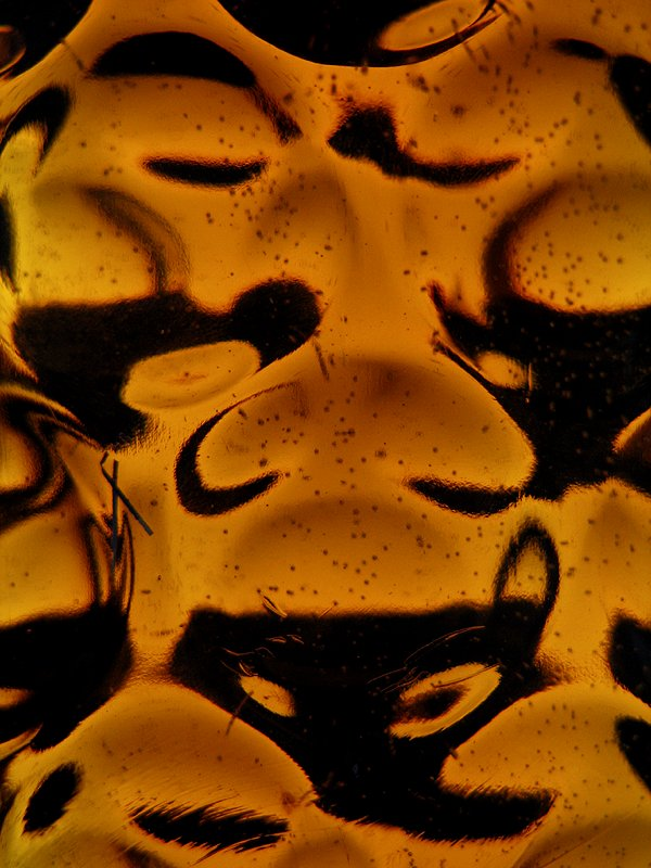 """photo """"Funny face of beer"""" tags: macro and close-up, misc.,"""