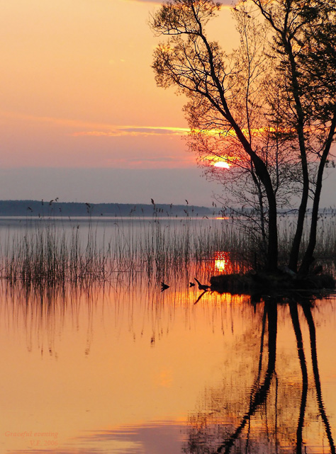 """photo """"Graceful evening"""" tags: landscape, sunset, water"""