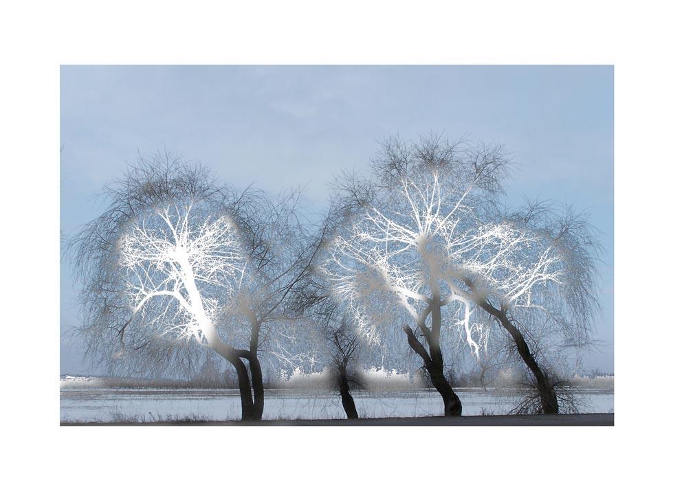"photo ""Primavera"" tags: landscape, spring"