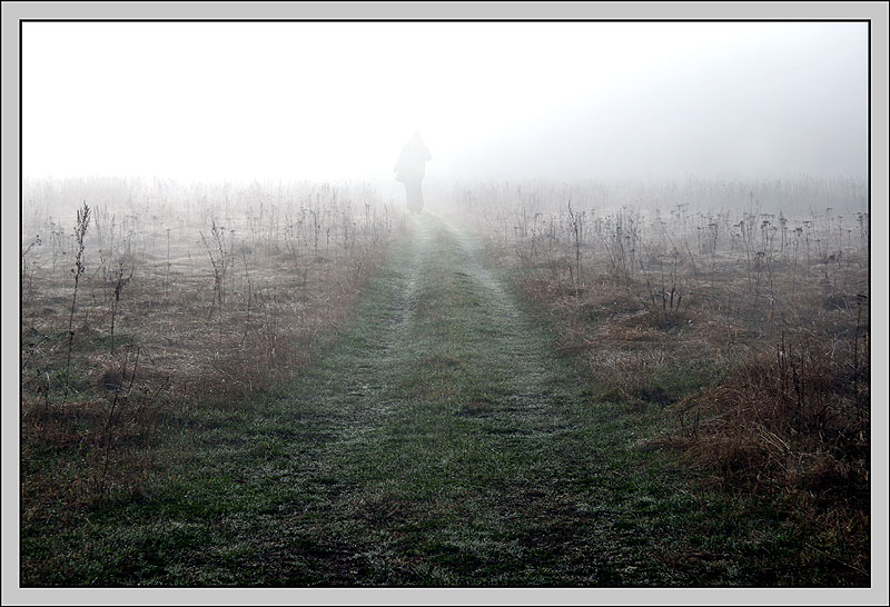 "photo ""In a fog"" tags: nature, landscape,"
