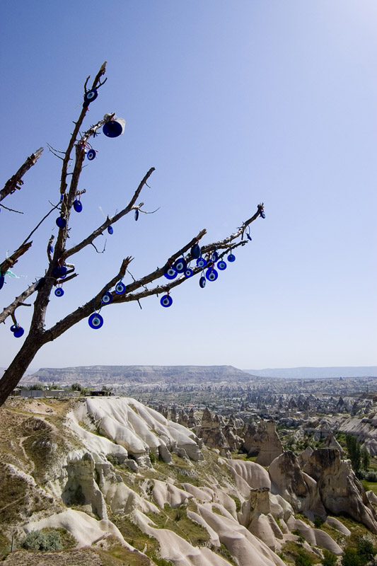 """photo """"Tree in the center of Turkey"""" tags: travel, Asia"""