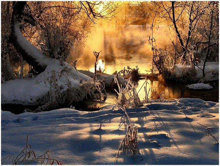 """фото """"Сон про зиму"""" метки: пейзаж, закат, зима"""