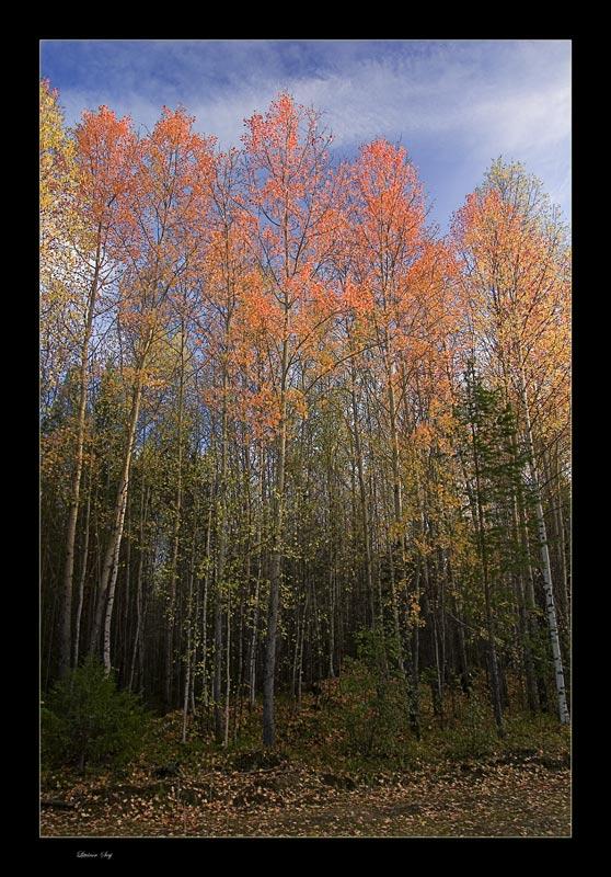 "фото ""Colors of autumn..."" метки: пейзаж, осень"