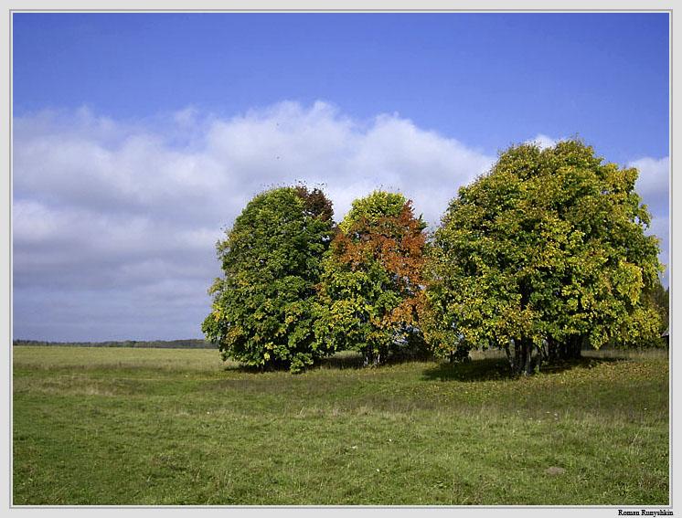 "photo ""Autumn Trinity"" tags: landscape, autumn"