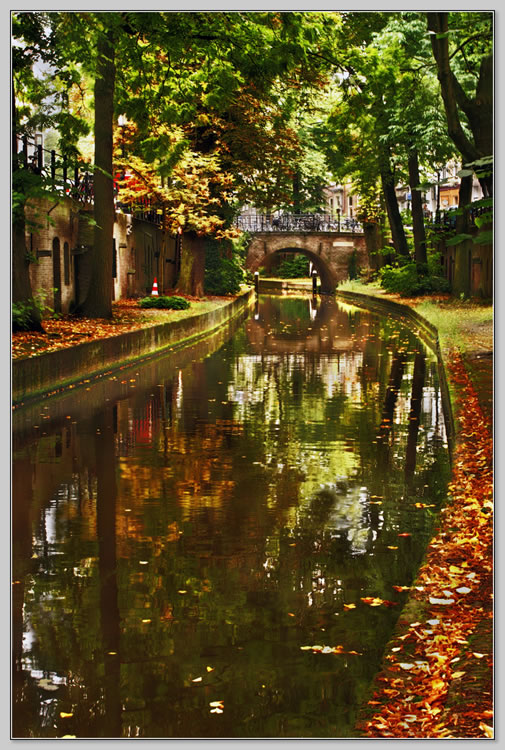 """фото """"Утрехт. Про велосипеды..."""" метки: пейзаж, путешествия, осень"""