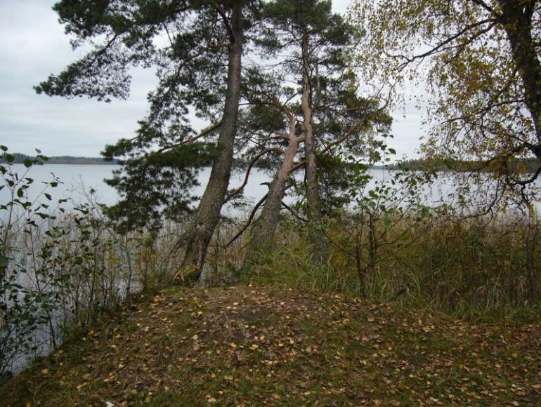 "фото ""Три сестры"" метки: пейзаж, лес"