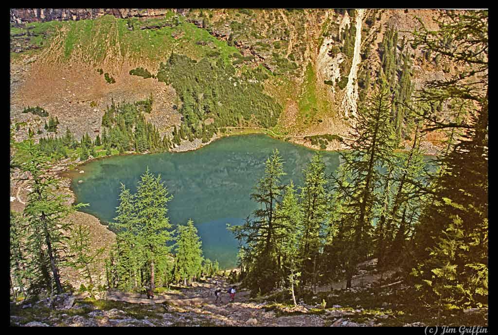 """фото """"Lake Agnes from above"""" метки: пейзаж, вода, горы"""