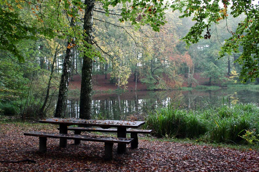 "фото ""Autumn"" метки: пейзаж, вода, лето"