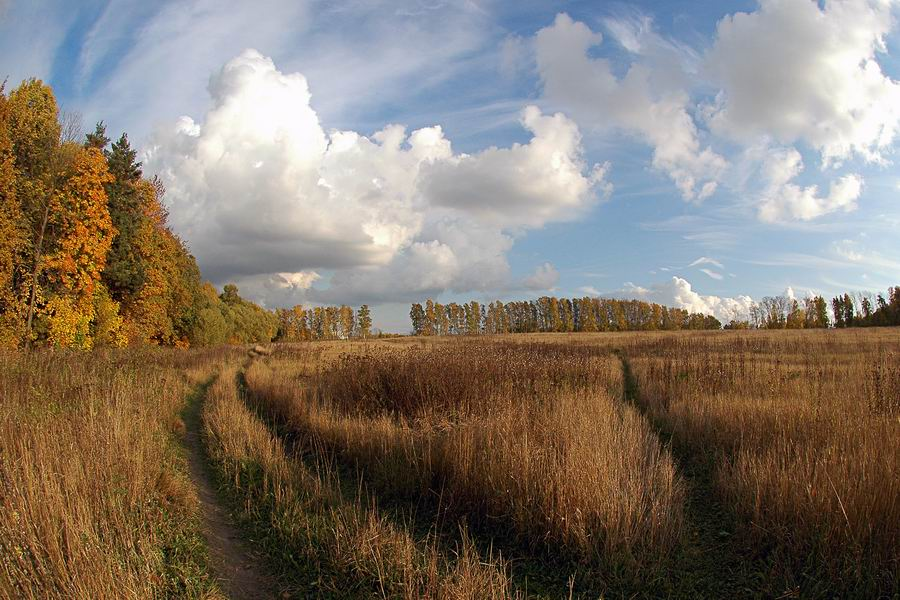 "photo ""Russian field"" tags: landscape, autumn"