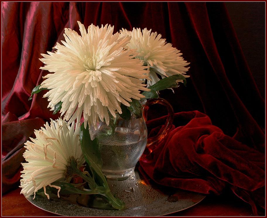 твоем профиле картинки хризантемы в вазе настоящее время происходит
