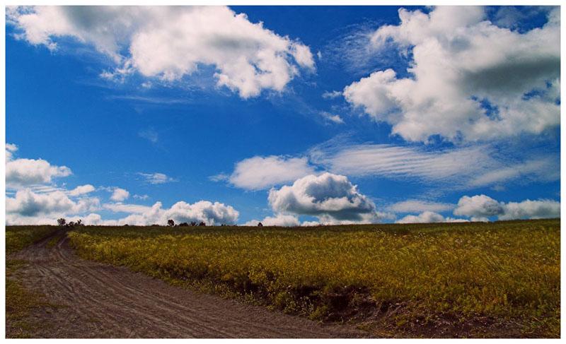 """фото """"Эх дороги..."""" метки: пейзаж, лето"""