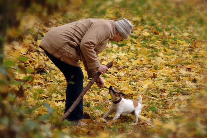 """фото """"свой маленький мирок"""" метки: жанр, пейзаж, осень"""
