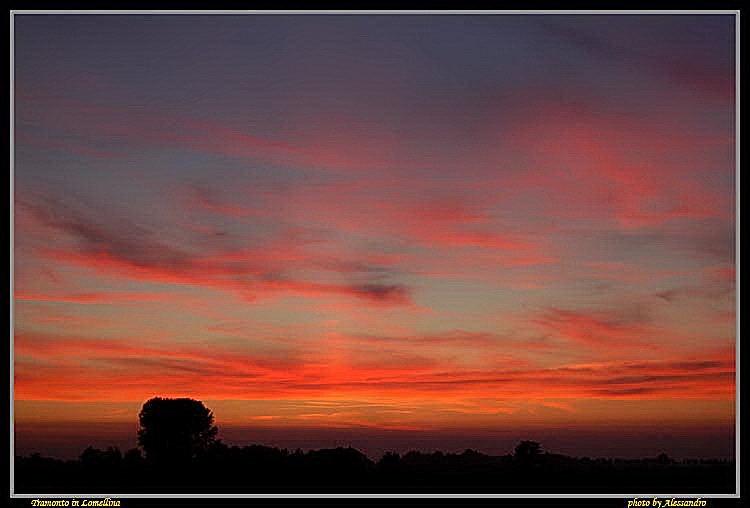 "фото ""tramonto in lomellina"" метки: пейзаж, закат"