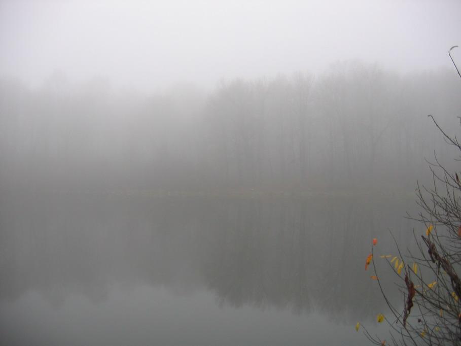 """фото """"Туман"""" метки: пейзаж, вода, осень"""