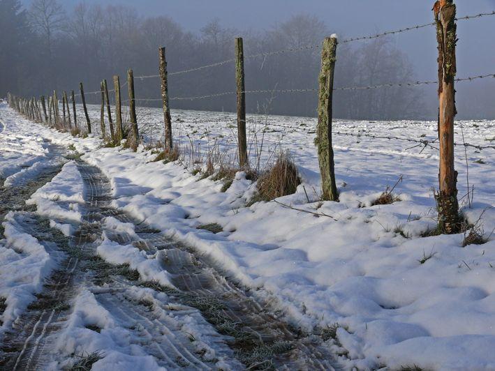"""фото """"Our only day of snow"""" метки: пейзаж, природа, зима"""