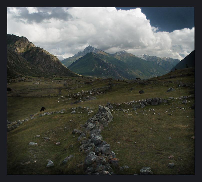 """фото """"Теленок в приэльбрусье."""" метки: пейзаж, горы"""