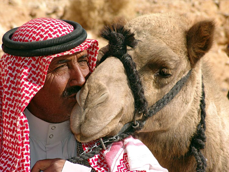 "фото ""The kiss: Salim is kissing his camel Shaylan, Wadi Humeima, Jordan 2006"" метки: путешествия, портрет, Азия"