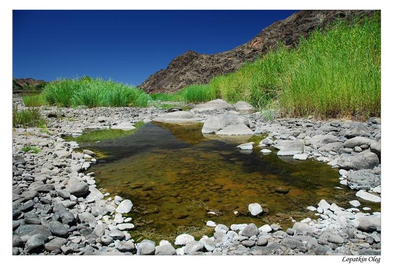 """фото """"Oasis, South of Namibia"""" метки: пейзаж, путешествия, Африка"""