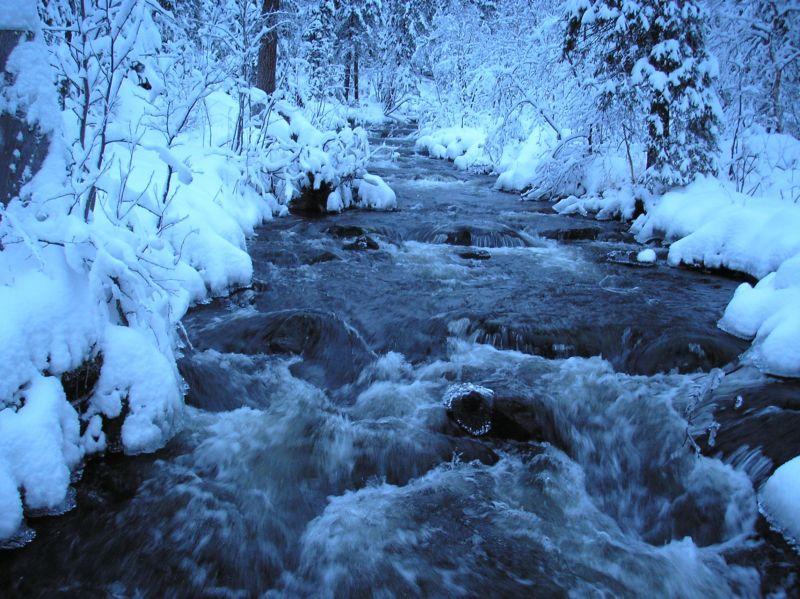 """фото """"зимний ручей"""" метки: пейзаж, зима"""