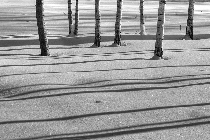 """фото """"февраль2"""" метки: черно-белые,"""