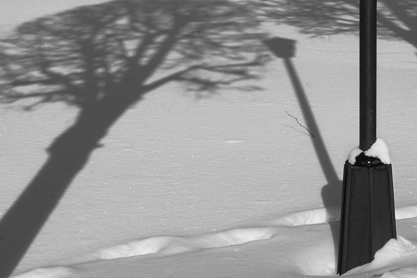 "фото ""метаморфоза"" метки: черно-белые,"