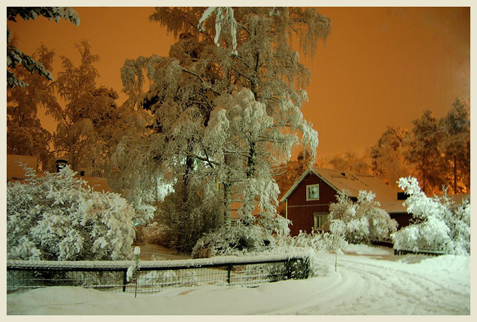 "photo ""Winter night"" tags: landscape, misc., winter"