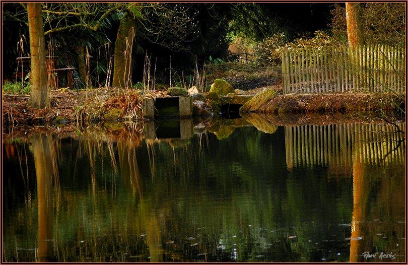 "фото ""sunny February day"" метки: пейзаж, вода"