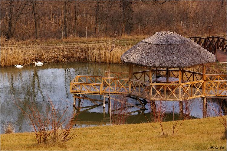 """фото """"Место, куда хочется вернуться весной..."""" метки: пейзаж, вода"""