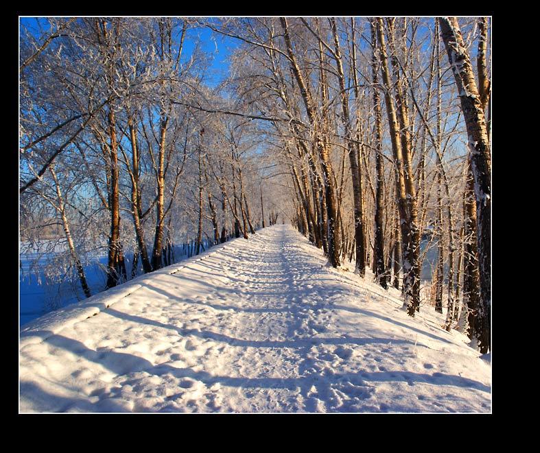 """фото """"Зимняя тропинка"""" метки: пейзаж, зима"""