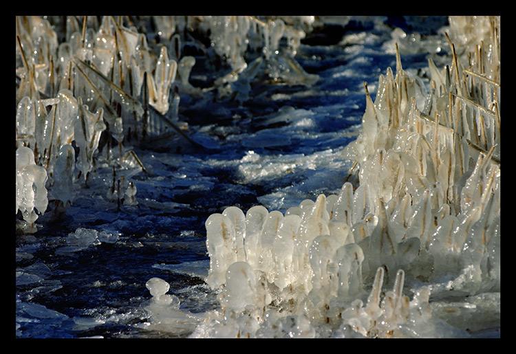 "фото ""ice age"" метки: пейзаж, зима"