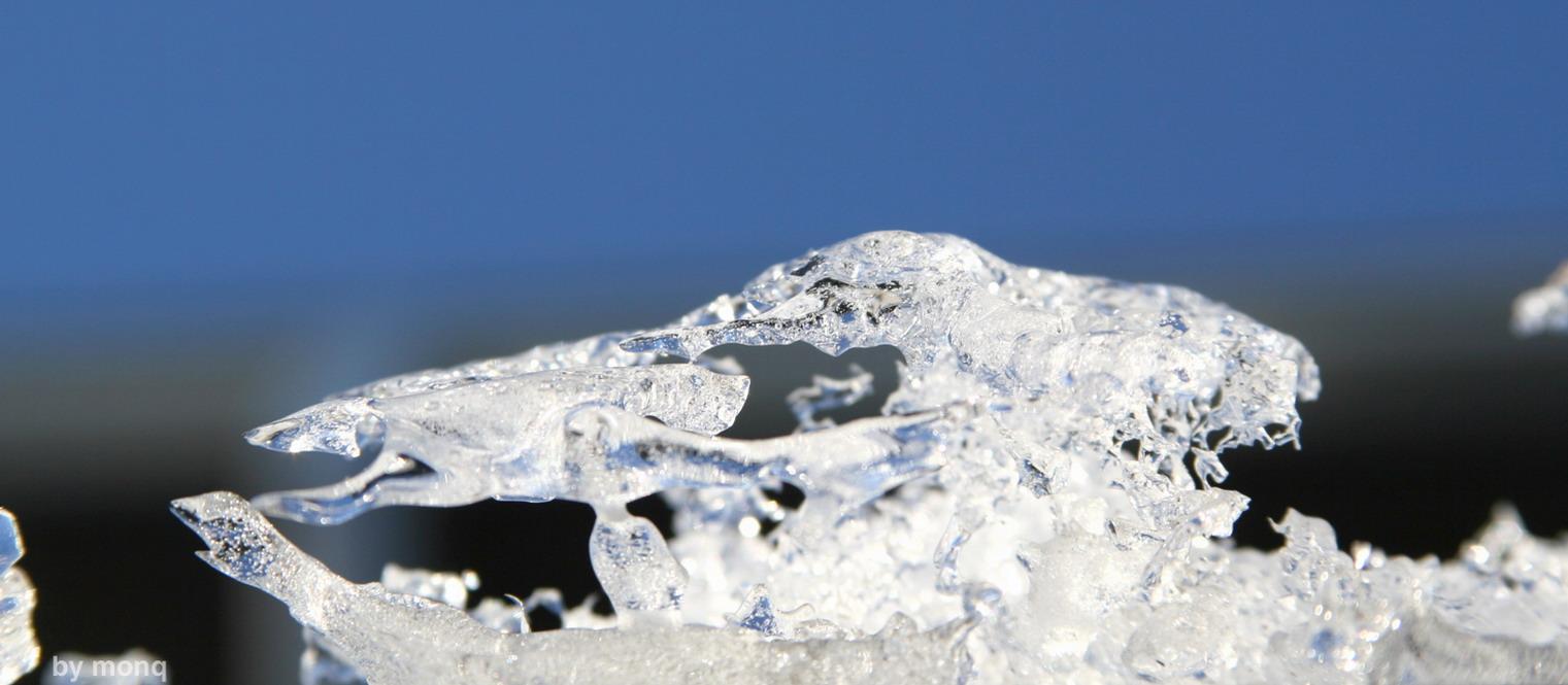 """фото """"ice"""" метки: макро и крупный план,"""