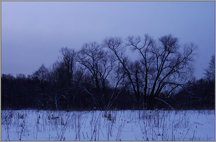 "photo ""The winter blues"" tags: landscape, nature, sunset"