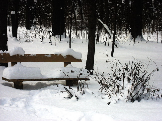 "photo ""Snow-covered bench"" tags: ,"