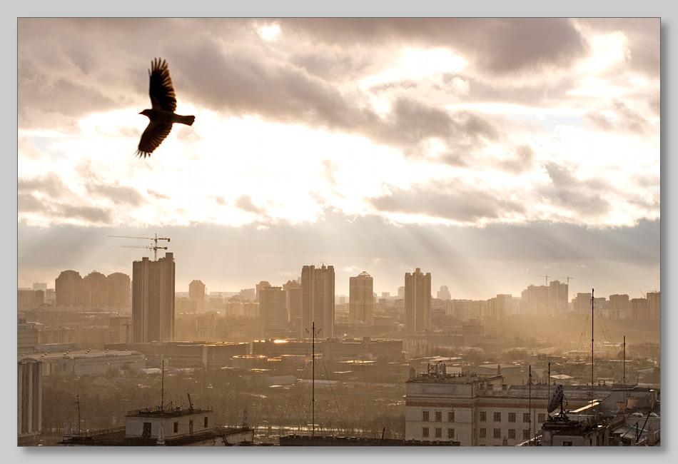 "photo ""Sun light"" tags: landscape, sunset, winter"