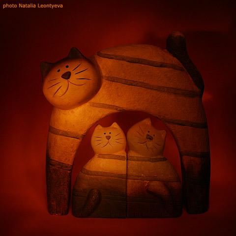 "фото ""Red Cats"" метки: натюрморт, разное,"