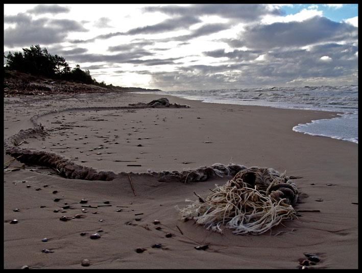"""фото """"After storm 1"""" метки: пейзаж,"""