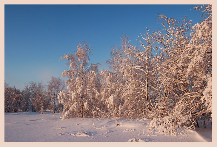 "photo ""Winter fairy-tale"" tags: landscape, sunset, winter"
