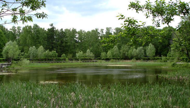 """фото """"пруд"""" метки: пейзаж,"""
